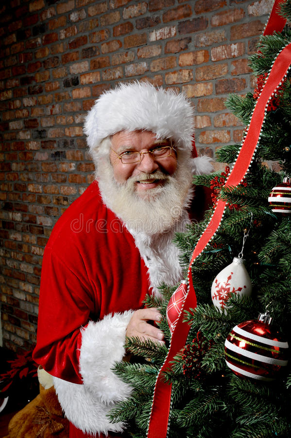 Santa Claus Behind The Christmas Tree Stock Images
