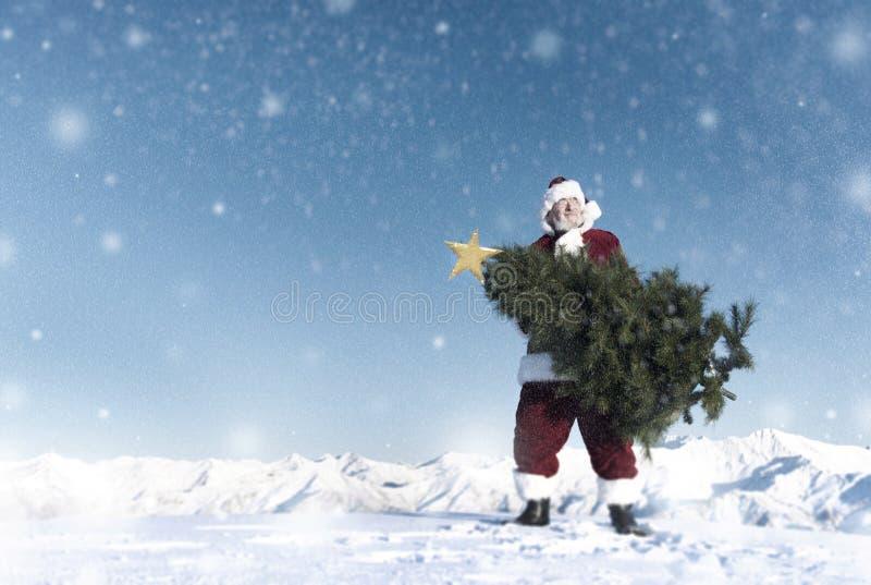 Santa Claus Carrying Christmas Tree sul concetto della montagna della neve fotografia stock libera da diritti