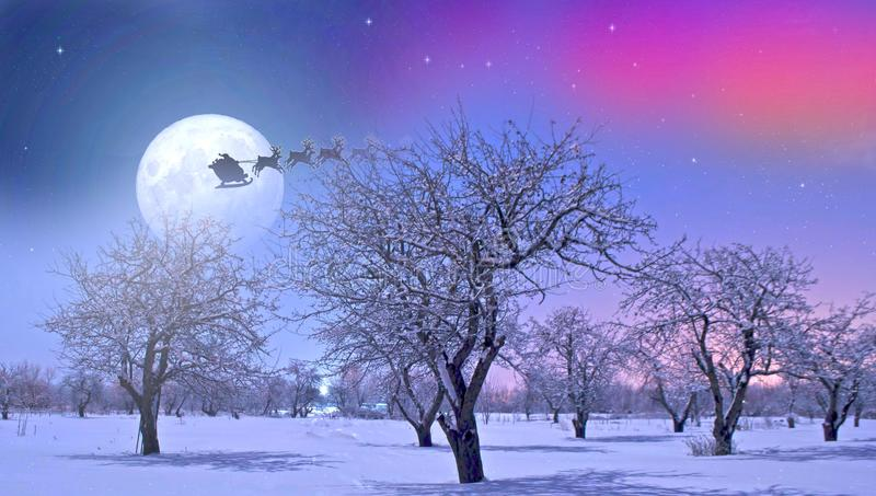 Santa Claus flies hugging over the winter garden royalty free stock images