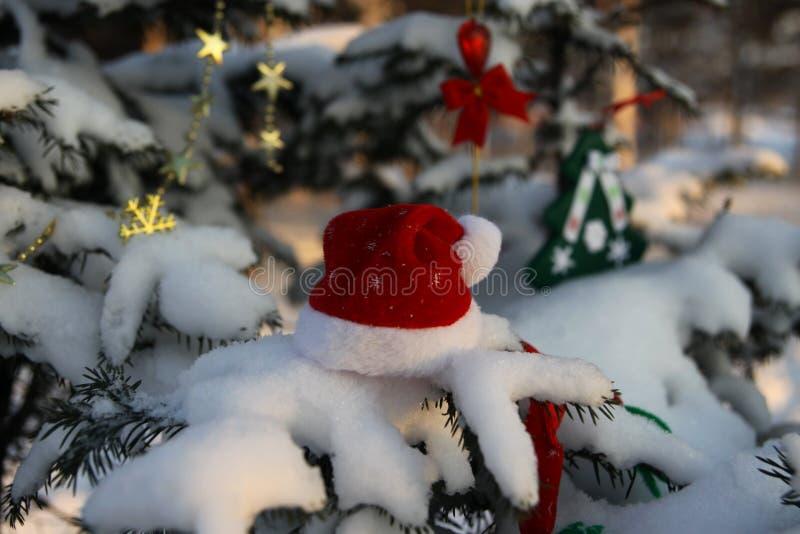 Santa Claus-hoed op een boomtak in sneeuw stock afbeeldingen