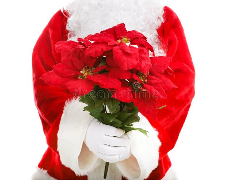 Santa Claus Holding Poinsettias royalty-vrije stock fotografie