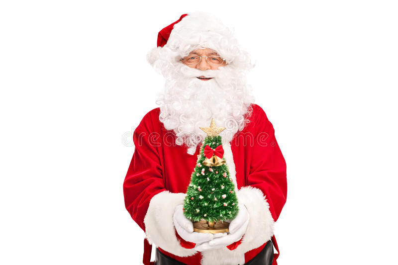 Santa Claus holding a small Christmas tree. Santa Claus holding a small decorated Christmas tree and looking at the camera isolated on white background stock image