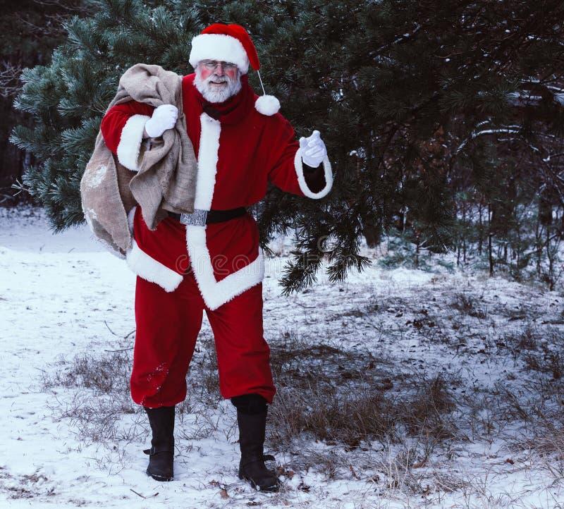 Santa Claus im Winterwald mit einer Tasche von Geschenken und von greetin lizenzfreie stockfotografie