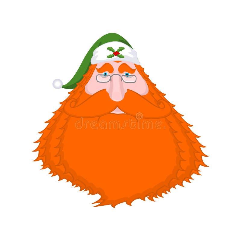 Santa Claus Ireland vector illustratie