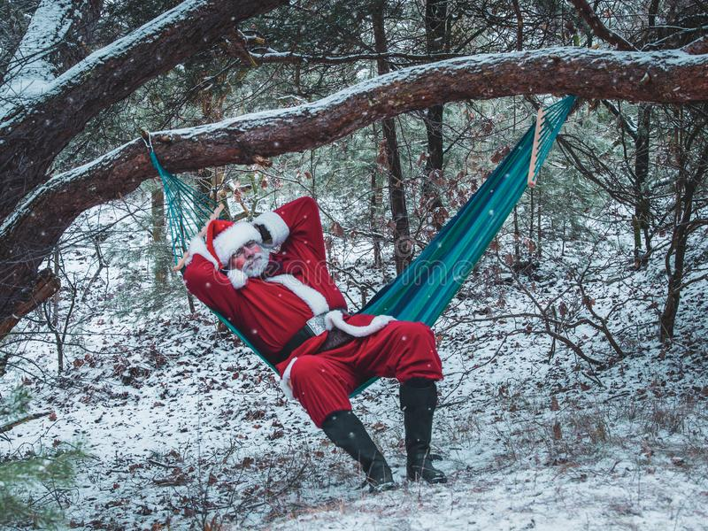 Santa Claus lies in the hammock in the snow-covered winter fores royalty free stock photo