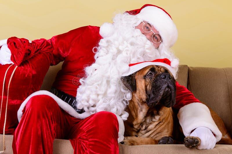 Santa Claus med hunden arkivbild
