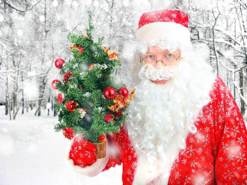 Santa Claus mit Weihnachtsbaum stockbild