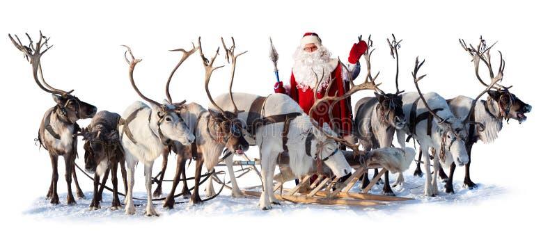 Santa Claus och hans hjortar royaltyfria bilder