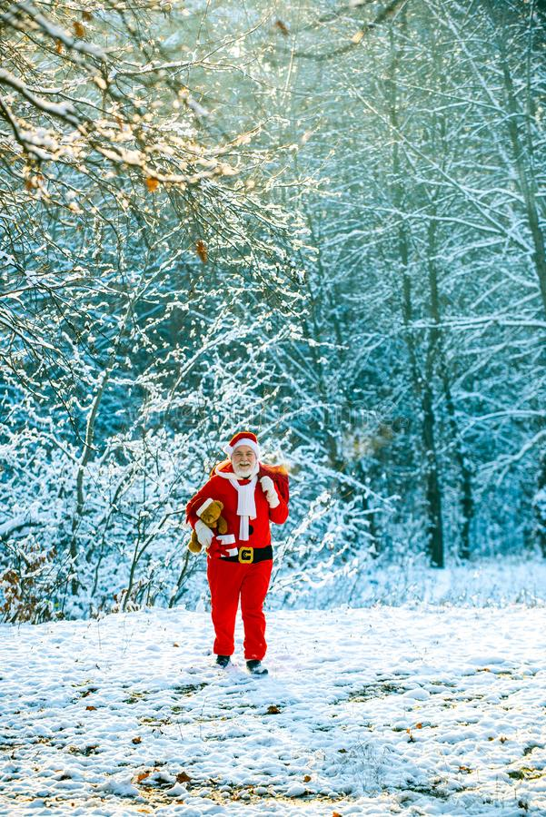 Santa Claus pulling huge bag of gifts on white nature background. Delivery christmas gifts. Winter Christmas greeting royalty free stock images