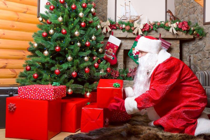 Santa Claus sätter gåvaaskar under julträd royaltyfria foton
