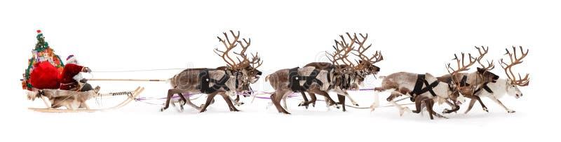 Santa Claus se está sentando en un trineo de los ciervos foto de archivo