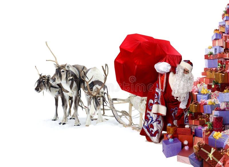 Santa Claus, ses cerfs communs et beaucoup de cadeaux de Noël image libre de droits
