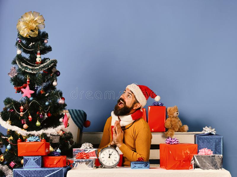 Santa Claus sits near fir tree on blue background. stock photography