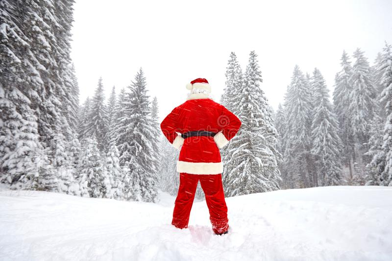 Santa Claus is standing back view in the woods in the winter a stock images