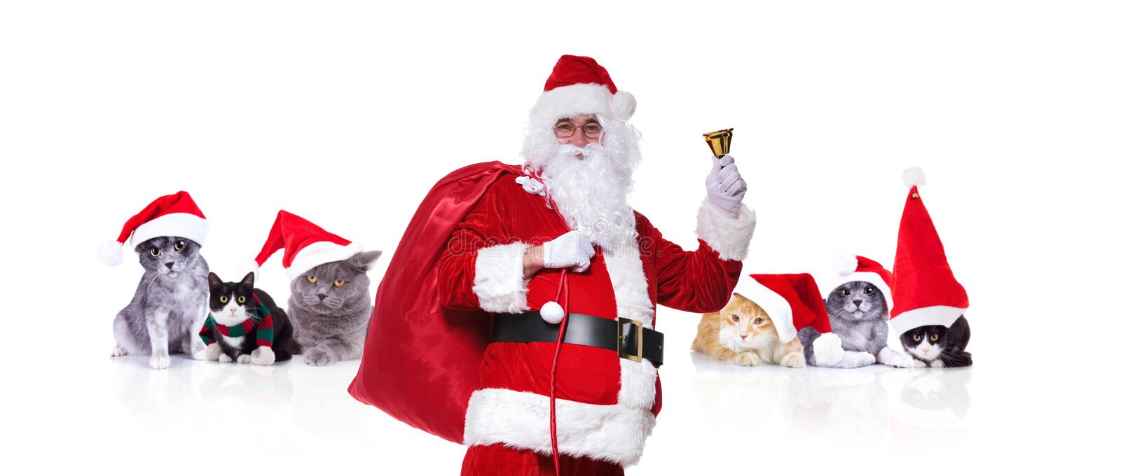 Santa claus standing in front of group of christmas cats stock images