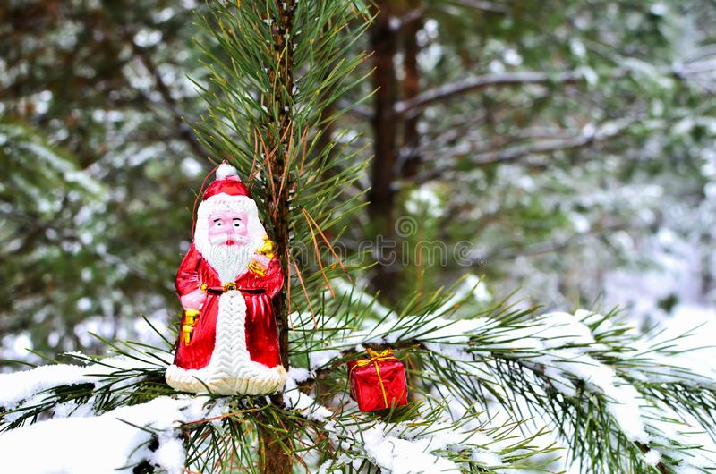 Santa Claus toy and Christmas Gift Box on a natural branch with pine tree needles on the snow background in forest. stock photos