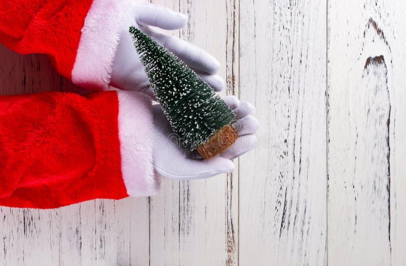 Santa Claus trzyma choinka modela na białym drewnianym tle obrazy royalty free