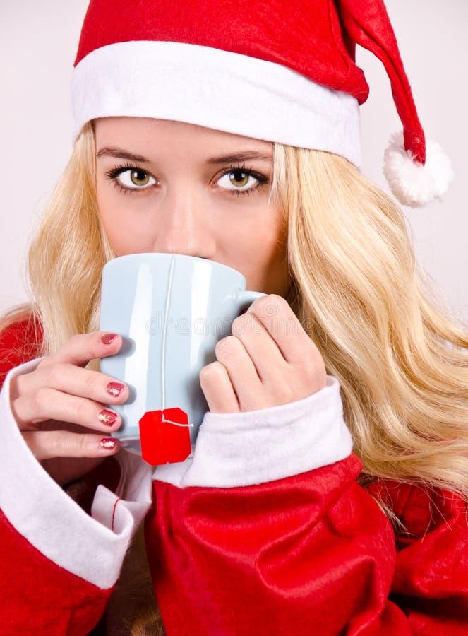 Santa Claus-vrouw royalty-vrije stock afbeeldingen