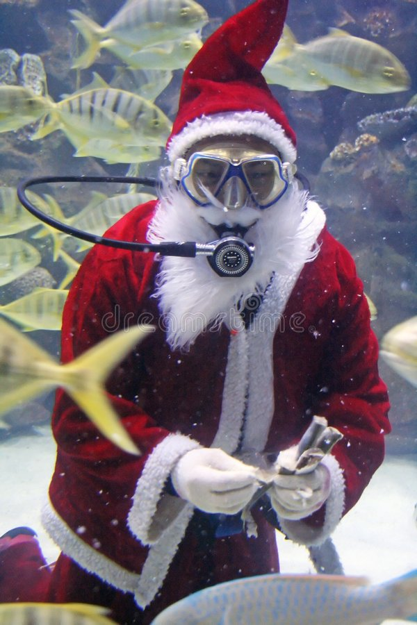 Santa Clause Feeding Fishes. At aquarium. (note: image is slightly grainy due to low light condition royalty free stock photography
