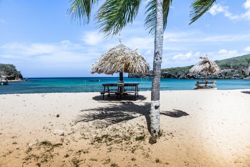 Santa Cruz Beach royalty-vrije stock fotografie