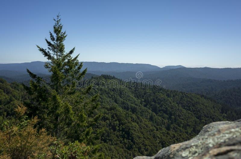 Santa Cruz-bergen in Castle Rock stock foto
