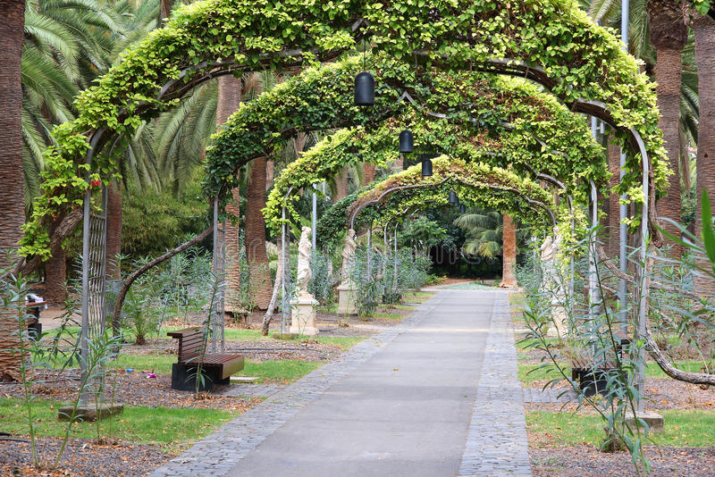 Santa Cruz de Tenerife. Spain - beautiful park area, Garcia Sanabria park stock photos