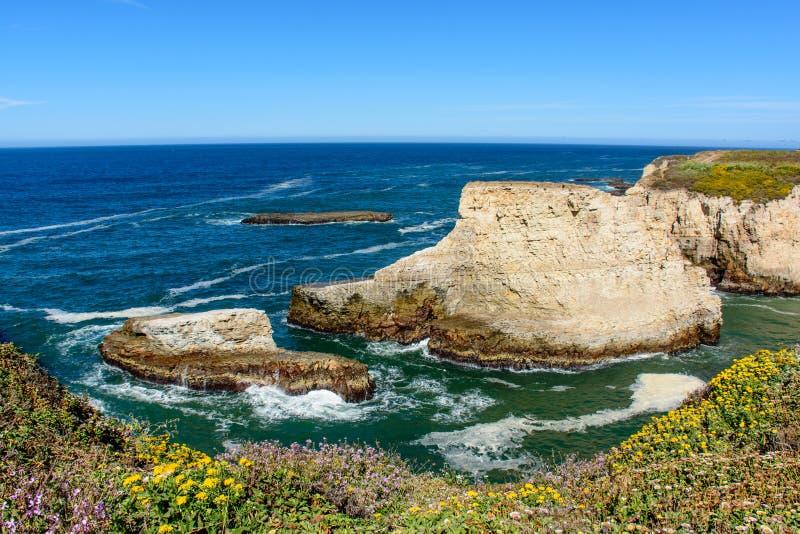 Santa Cruz Shark Fin Cove met Bloem stock afbeeldingen