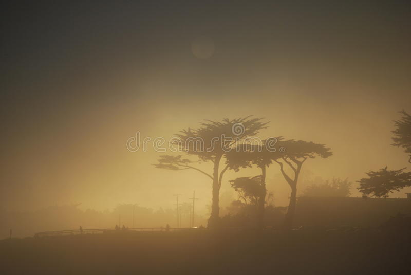 Santa Cruz Sunset im Nebel lizenzfreie stockbilder