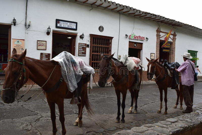 Santa Fé de Antioquia, Colômbia - junho 26.207: Foto do homem e dos três cavalos fotos de stock