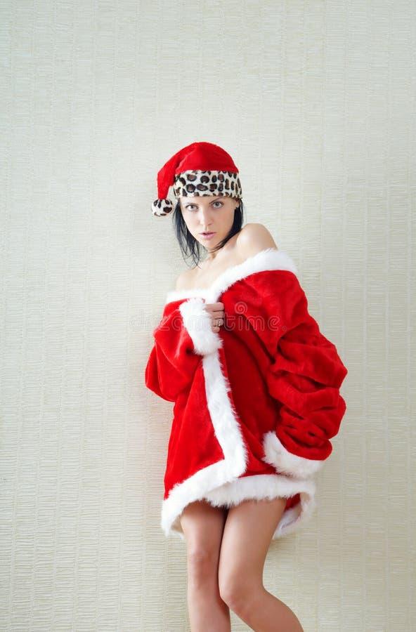 Santa fêmea imagem de stock