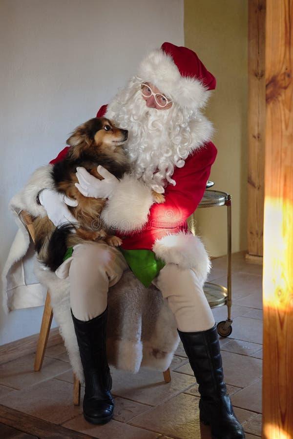 Santa joue avec un chien Santa Claus alimente des chiens photographie stock