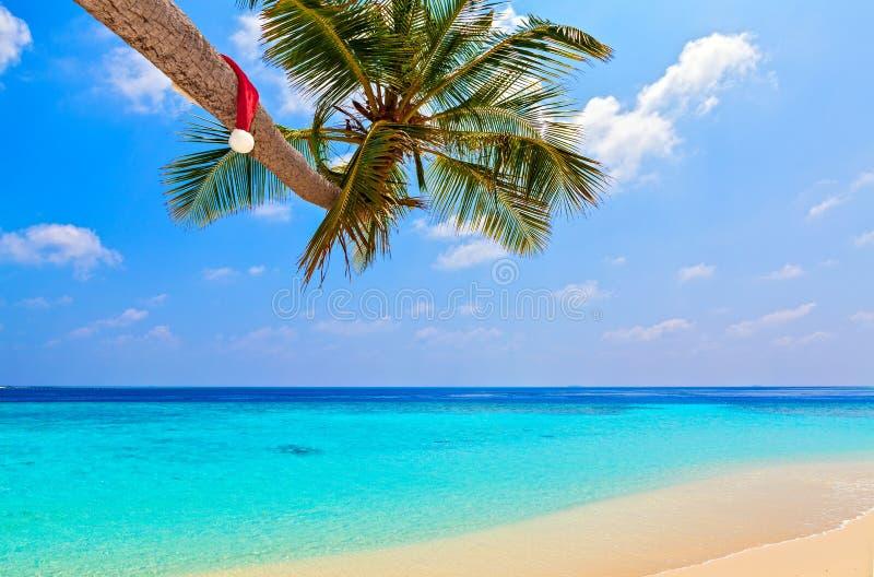 Santa kapelusz jest na plaży fotografia royalty free