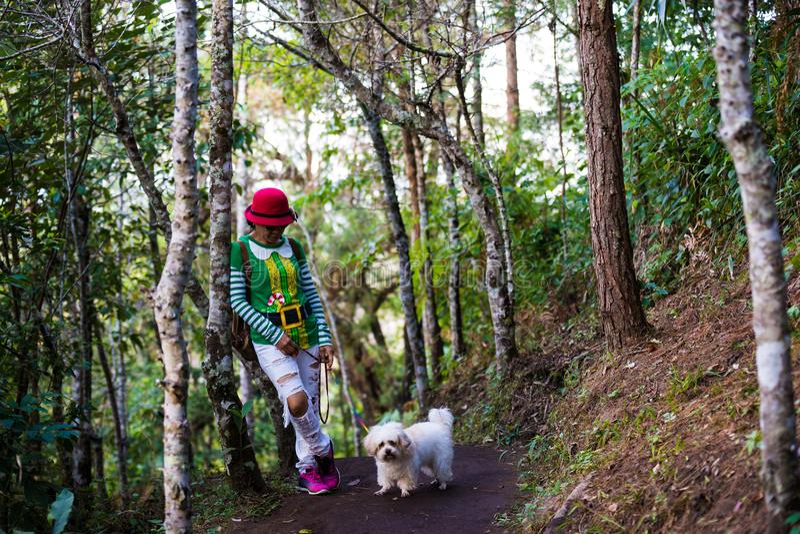 Santa kobiety chodzi w lesie z psem zdjęcia stock