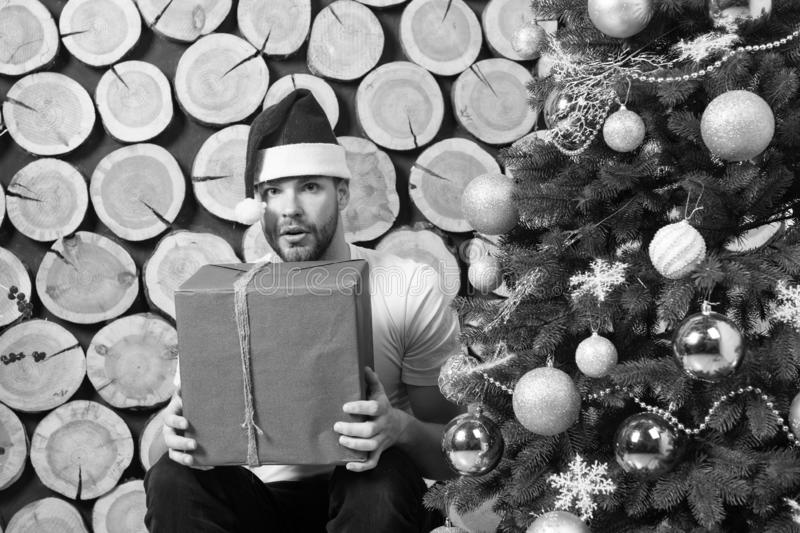 Santa man with box at xmas tree. Boxing day concept. Christmas and new year presents preparation. Macho in red hat hold gift. Happy holidays celebration royalty free stock photography