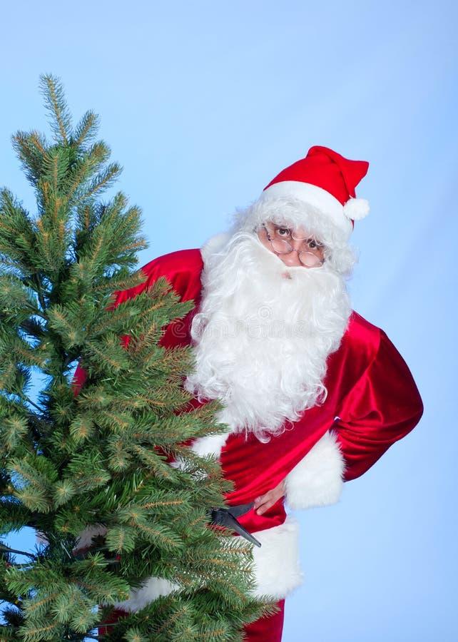 Santa och julgran royaltyfria bilder