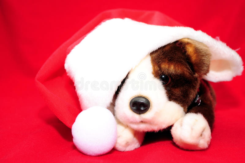 Download Santa Puppy stock image. Image of cherry, december, celebrate - 16849757