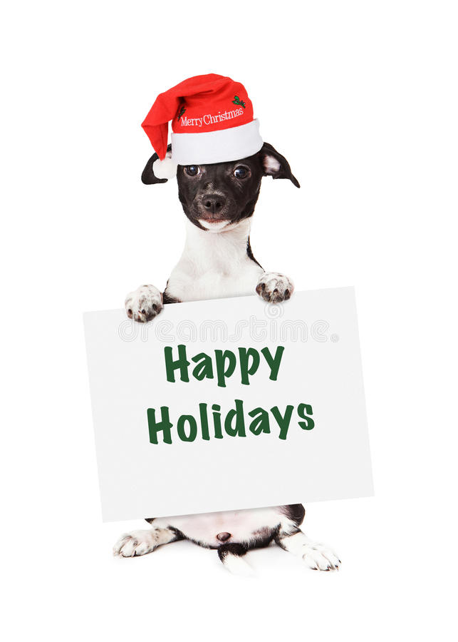 Santa Puppy With Happy Holidays Sign stock photography