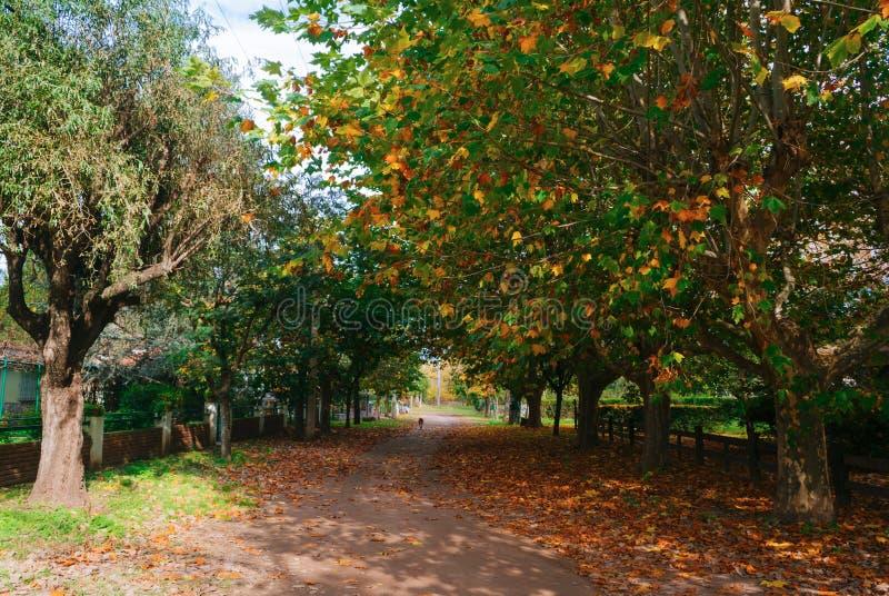 Santa Rosa de Calamuchita im Herbst stockfotografie