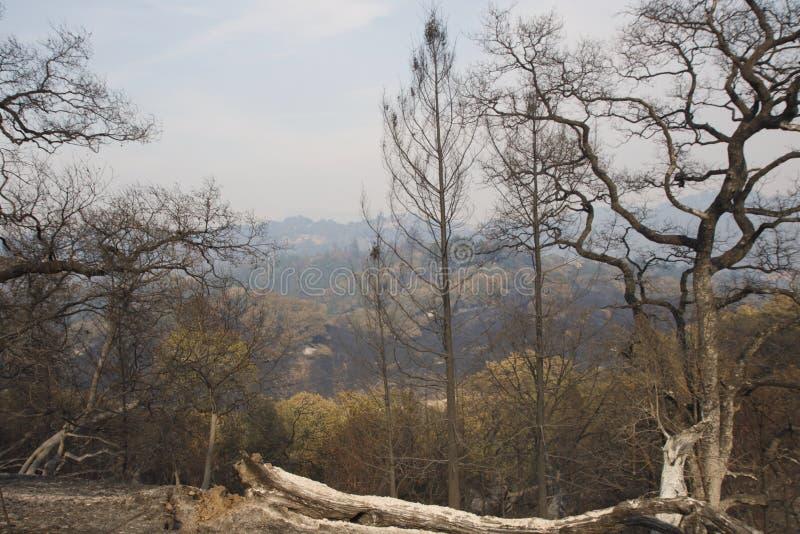 Santa Rosa - Shaloh Rigional parkerar efter brand arkivbild