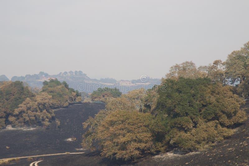 Santa Rosa - Shaloh Rigional parkerar efter brand fotografering för bildbyråer
