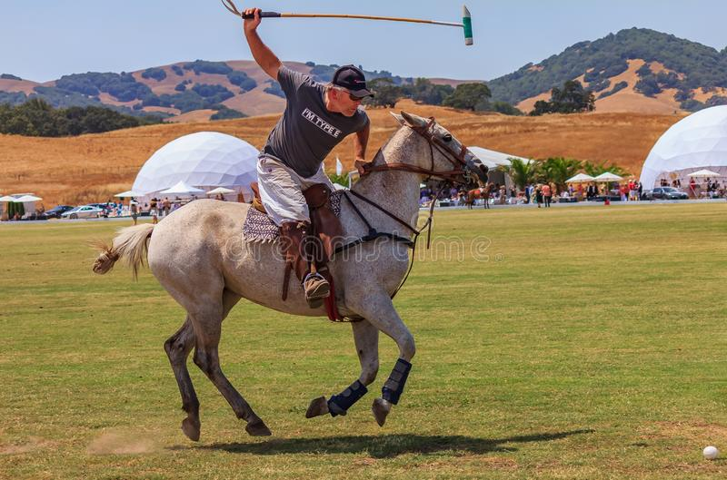 Polo players riding on horseback getting ready to hit the polo ball at high speed. Santa Rosa, United States - August 03, 2014: Polo player on the field riding royalty free stock images