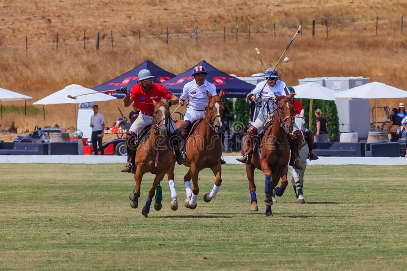 Polo players riding on horseback after the polo ball at high speed. Santa Rosa, United States - August 03, 2014: Polo players on the field riding on horseback stock photos