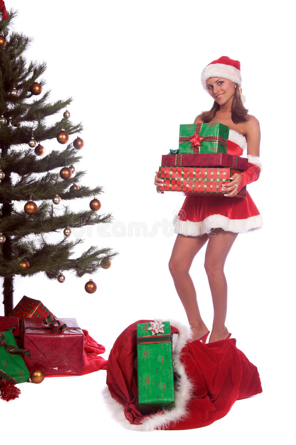 Santa's Helper Mrs Claus royalty free stock image