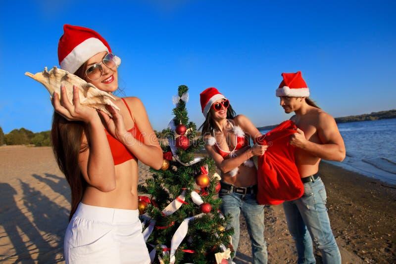 Download Santa's Helper At The Tropical Beach Stock Image - Image: 22649171