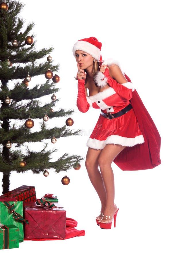Download Santa's Helper stock image. Image of person, beautiful - 1313297