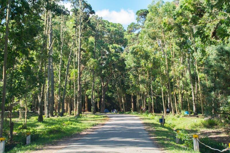 Santa Teresa park narodowy, Rocha, Urugwaj zdjęcie royalty free