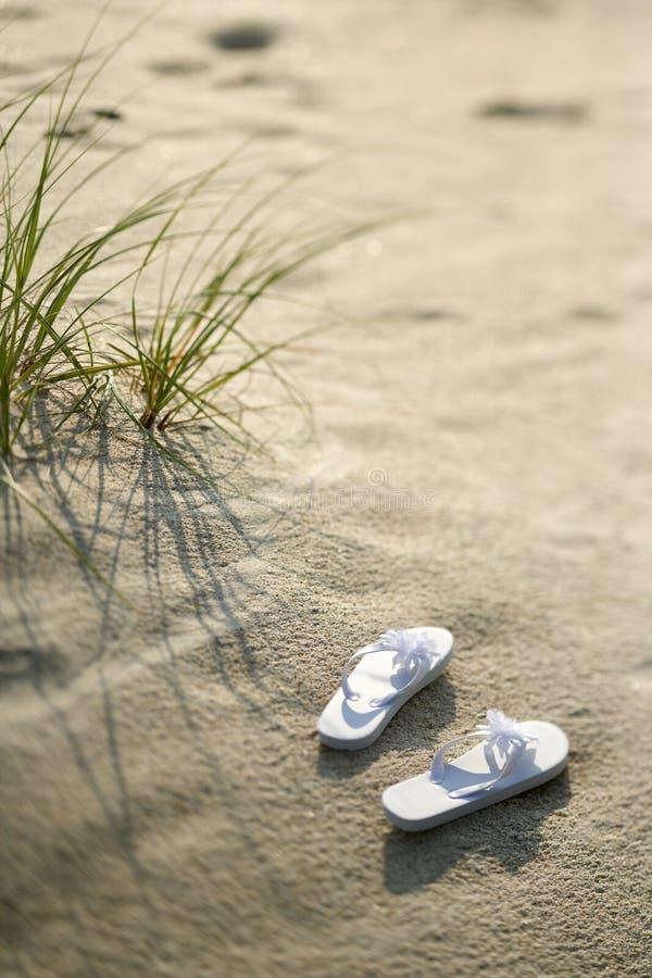 Santals sur la plage. image libre de droits