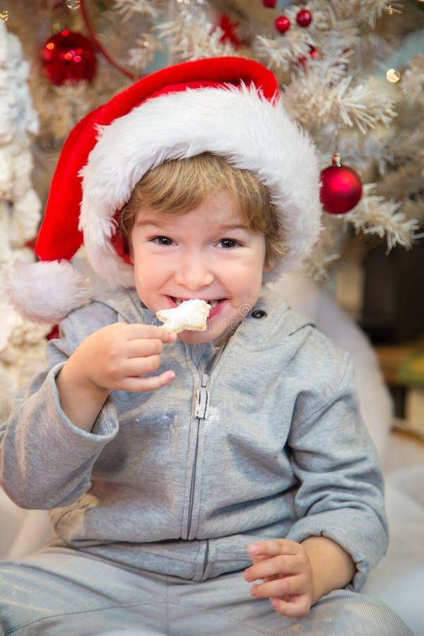 Santas little helper eating Christmas cookies. stock image