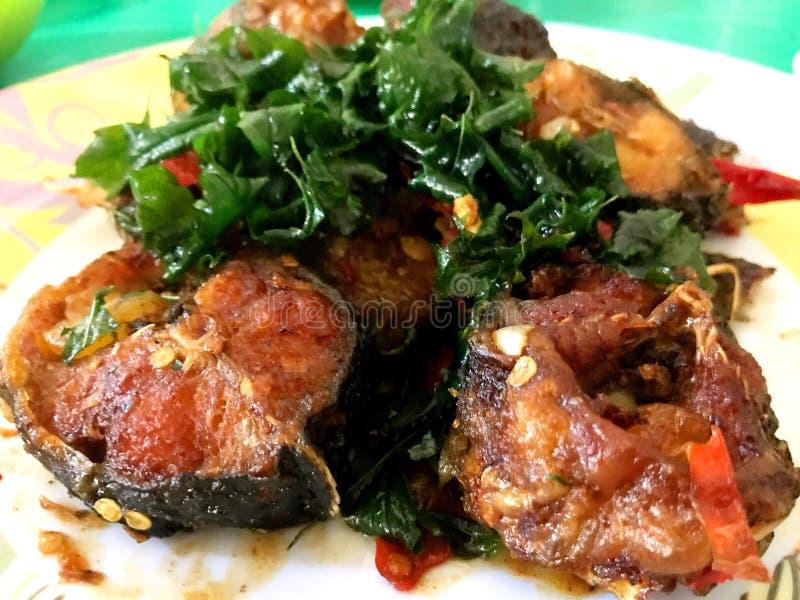 Santed ест рыб с чилями стоковые фотографии rf