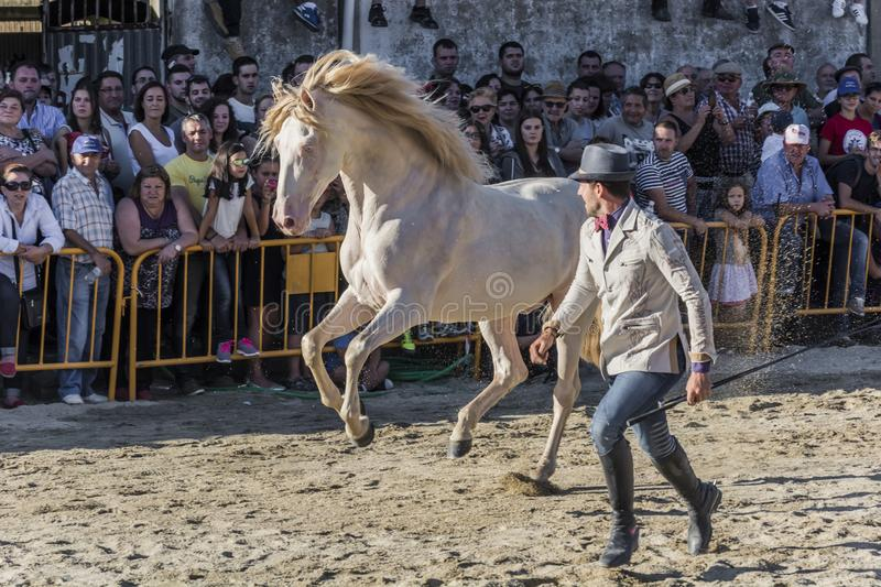 Santi Serra running with one of his stunning horses in an exhibition in Lugo, Spain, August 2016. Santi Serra, Spanish horseman, running with one of his awesome royalty free stock image